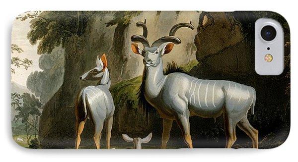 A Kudus Or Kudu IPhone Case