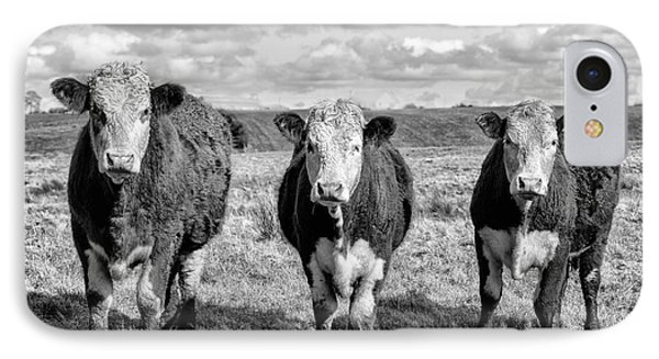The Ladies Three Cows IPhone Case