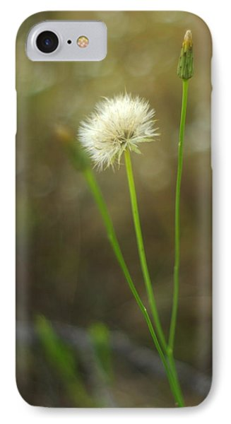 IPhone Case featuring the photograph The Last Dandelion by Suzanne Powers