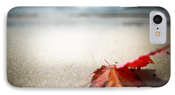 The Last Leaf IPhone Case by Susan Cole Kelly Impressions