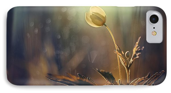 The Last Light IPhone Case by Magda  Bognar