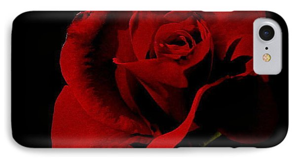 The Last Rose Of  Summer... IPhone Case by Marija Djedovic