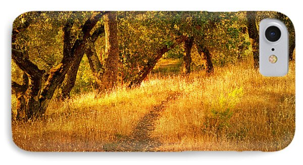 The Late Afternoon Walk IPhone Case by Roselynne Broussard