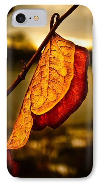 The Leaf Across The River IPhone Case by Bob Orsillo