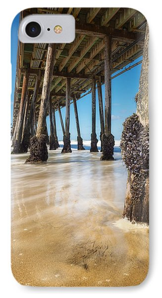 The Life Of A Barnacle Phone Case by Ryan Manuel