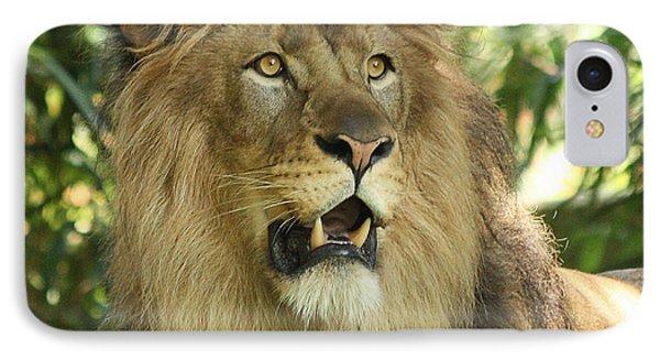 The Lion King Phone Case by Kim Hojnacki