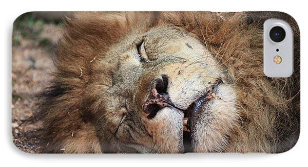 The Lion Sleeps Tonight V4 Phone Case by Douglas Barnard