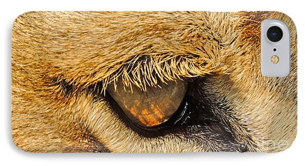 IPhone Case featuring the photograph The Lion's Eye by Eve Spring