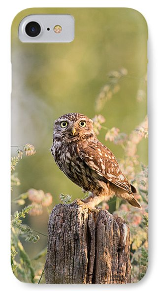 The Little Owl IPhone Case by Roeselien Raimond