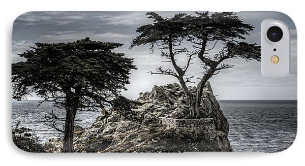 The Lone Cypress IPhone Case by Eduard Moldoveanu