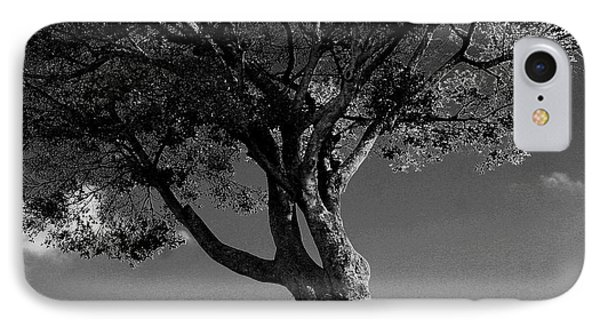 The Lone Tree Black And White IPhone Case by Marty Gayler