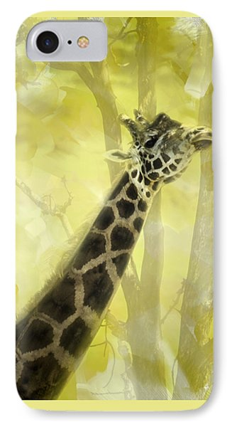 The Long Morning Stretch IPhone Case by Diane Schuster