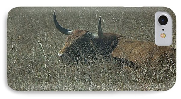IPhone Case featuring the photograph The Longhorn by Alan Lakin