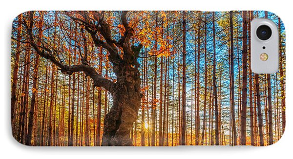 The Lord Of The Trees IPhone Case by Evgeni Dinev
