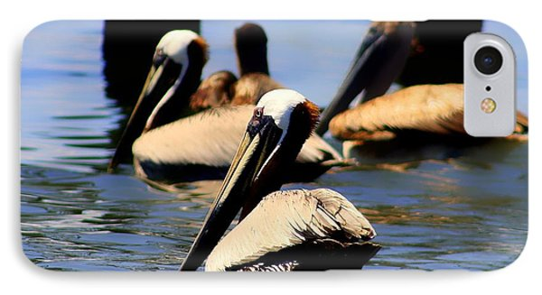 The Lovely Pelican  Phone Case by Debra Forand