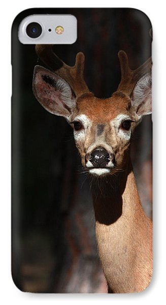 IPhone Case featuring the photograph The Magnificent One  by Rita Kay Adams