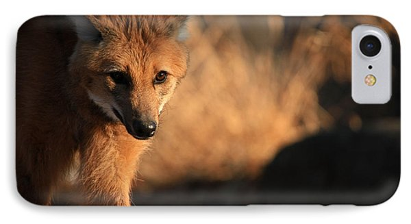 The Maned Wolf Phone Case by Karol Livote