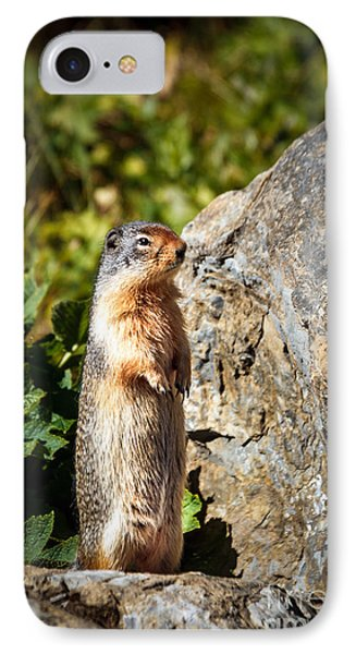 The Marmot IPhone Case by Robert Bales