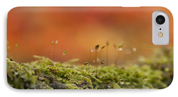The Miniature World Of Moss  Phone Case by Anne Gilbert