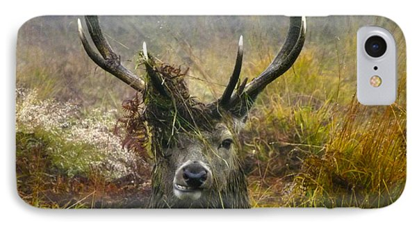 Stag Party The Series The Morning After IPhone Case by Linsey Williams