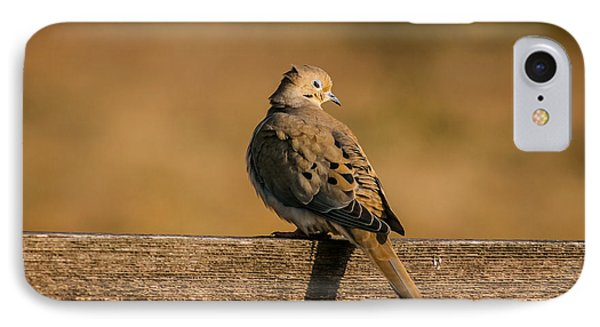 The Morning Dove IPhone Case