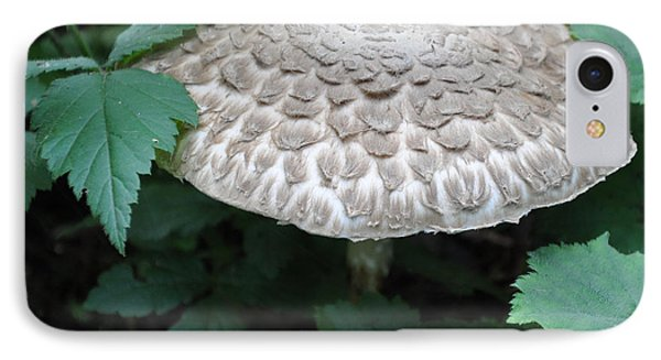The Mushroom IPhone Case by Kirt Tisdale