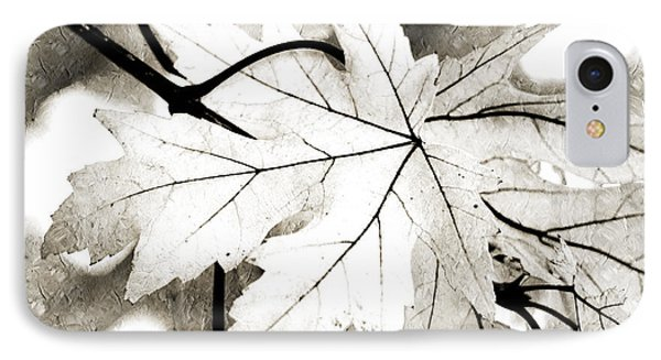 The Mysterious Leaf Abstract Bw IPhone Case by Andee Design