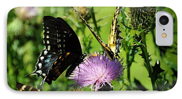 The Nectar Seekers IPhone Case by Rebecca Sherman