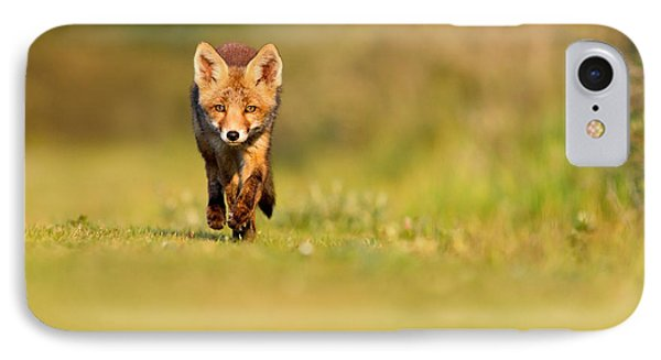 The New Kit On The Grass - Red Fox Cub IPhone Case by Roeselien Raimond