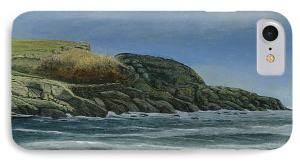 The Nubble IPhone Case by Nan McCarthy
