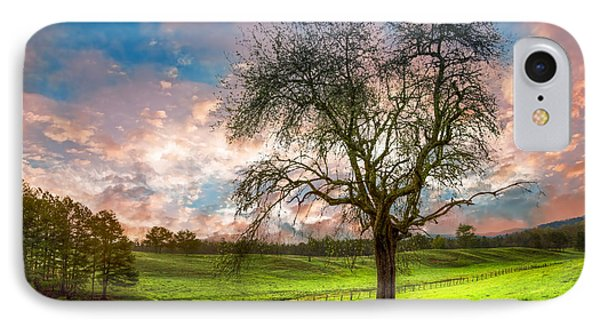 The Old Apple Tree At Dawn IPhone Case by Debra and Dave Vanderlaan