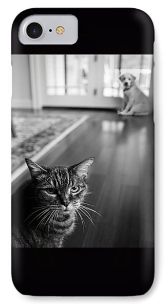 The Old Cat And The New Puppy Phone Case by Diane Diederich