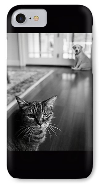 The Old Cat And The New Puppy IPhone Case by Diane Diederich