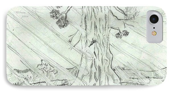 IPhone Case featuring the drawing The Old Tree In Spring Light  - Sketch by Felicia Tica