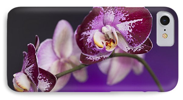 The Orchid Watches IPhone Case