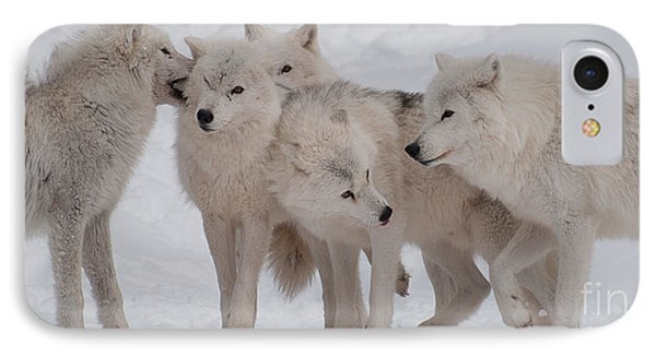IPhone Case featuring the photograph The Pack by Bianca Nadeau