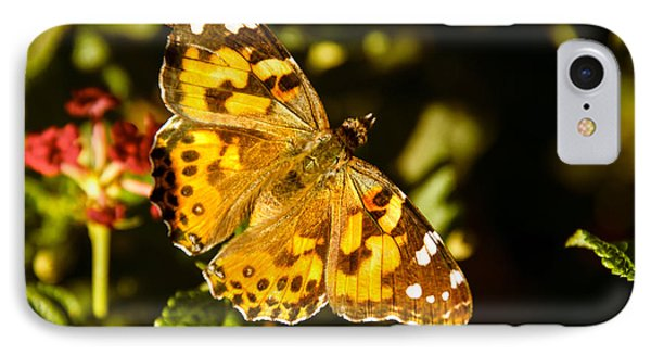 The Painted Lady IPhone Case by Robert Bales