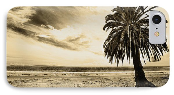 The Palm Swayed As The Storm On The Ocean Blew In Phone Case by Artist and Photographer Laura Wrede