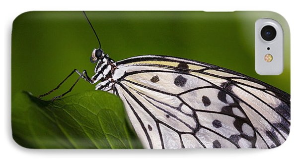 IPhone Case featuring the photograph The Paper Kite Butterfly by Zoe Ferrie