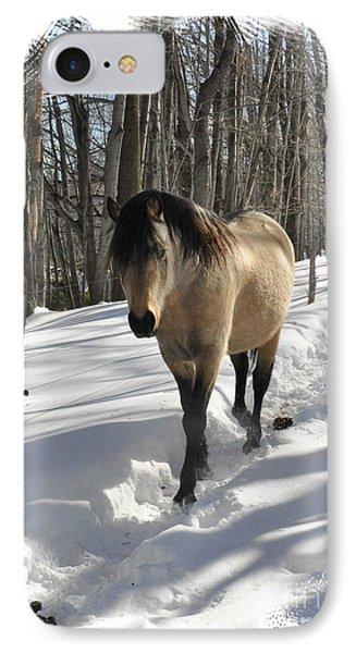 The Paso Fino Stallion Named Brio Phone Case by Patricia Keller