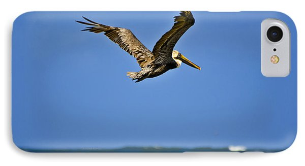 IPhone Case featuring the photograph The Pelican And The Sea by DigiArt Diaries by Vicky B Fuller