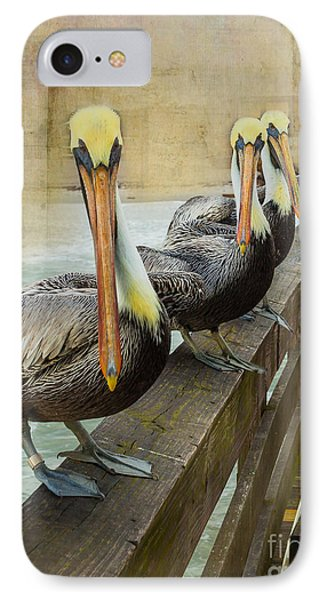 The Pelican Gang IPhone Case by Steven Reed