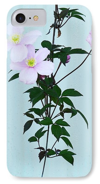 The Pink Clematis IPhone Case by Steve Taylor