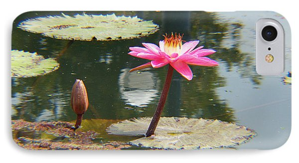 The Pink Water Lily With Lily Pads - One IPhone Case by J Jaiam