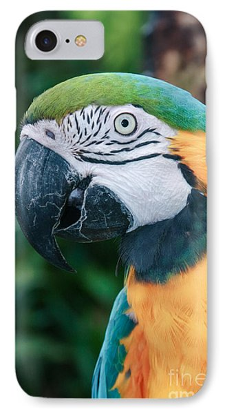 The Poetry Of Nature Phone Case by Sharon Mau