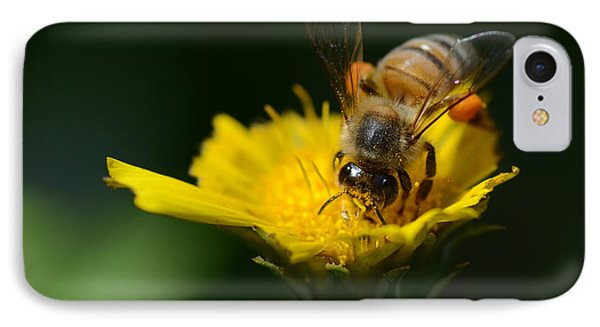 The Pollinator IPhone Case