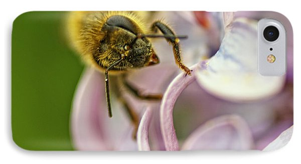 Honeybee iPhone 7 Case - The Pollinator by Susan Capuano