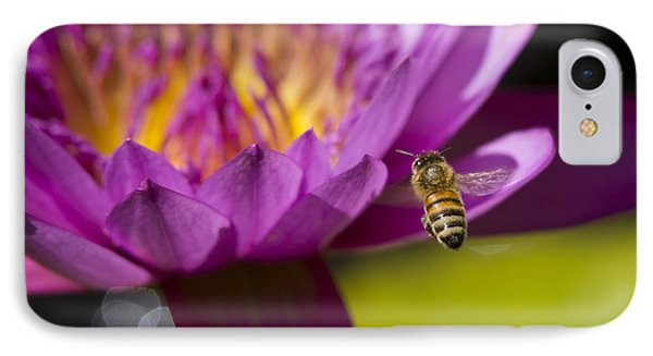The Promise Of Pollen IPhone Case by Priya Ghose