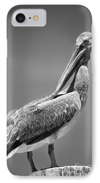 The Proper Pelican IPhone Case by Michelle Wiarda