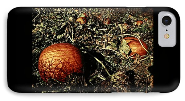 The Pumpkin Patch IPhone Case by Chris Berry